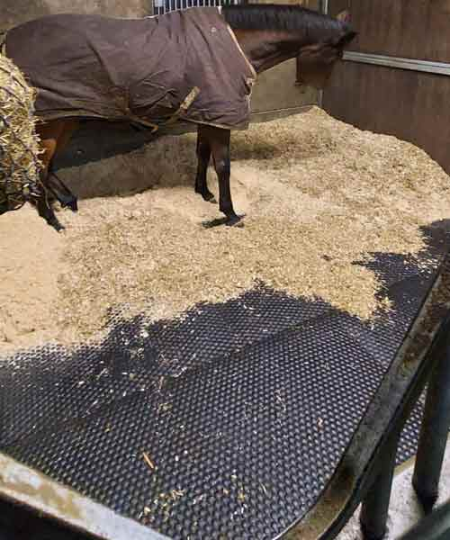 Mayo Mattress Stable Mat with horse
