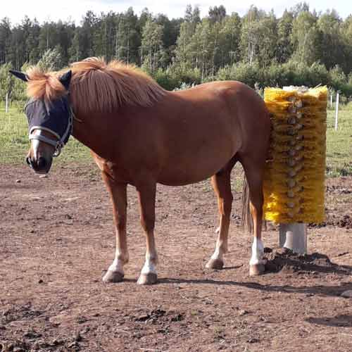 Easyswing brush horse scratcher
